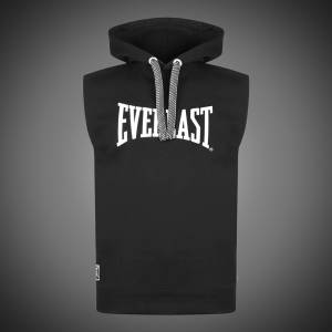 Vesta Everlast Logo black
